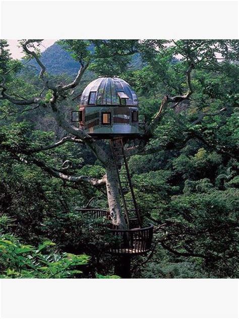 World's Most Extreme Tree Houses Gentlemint