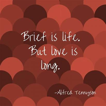 Quotes Indian Magical Express True Weddings Simple
