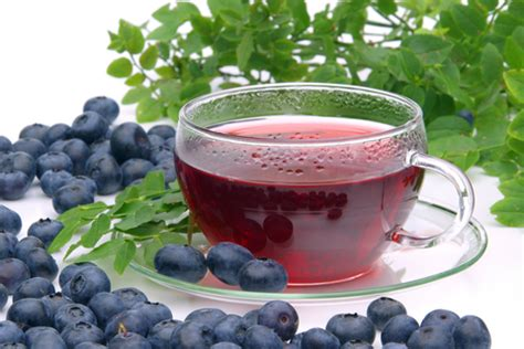 buy blueberry tea benefits side effects