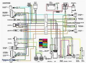 Go Go Scooter Wiring Diagram