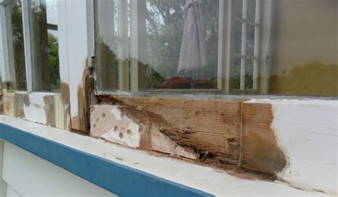 Window Sill Suppliers by Repair Care Repairing Rot In Wooden Window Frames