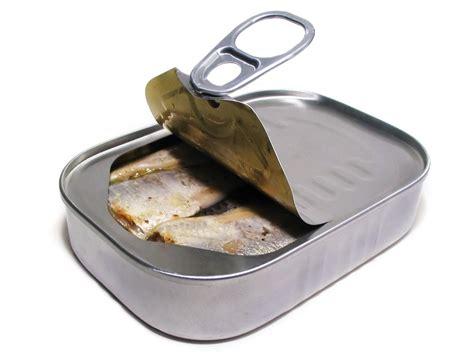 sardine cuisine never underestimate a sardine where i need to be