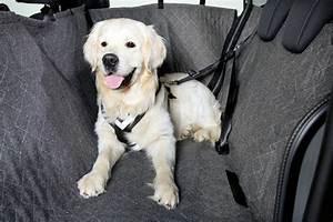 Hundegurt Fürs Auto : autoschondecke mit doppelrei verschluss absolut ~ Kayakingforconservation.com Haus und Dekorationen