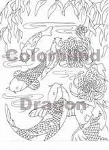 Koi Coloring Fish Japanese Printable Carp sketch template