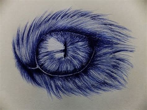 cat eye drawing  ballpoint  youtube