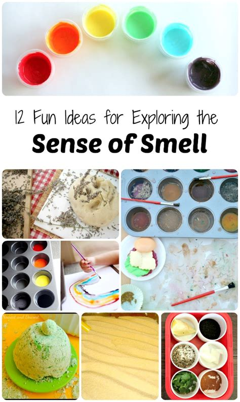 ideas for exploring the sense of smell 126 | 12 Fun Ideas for Exploring the Sense of SmellUnique ideas for toddlers preschoolers and school age kids