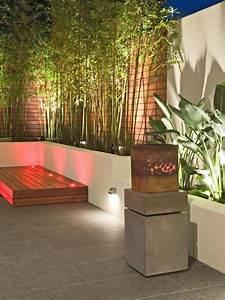 Bambou  Gramin U00e9e   Donnez De La Structure  U00e0 Votre Jardin