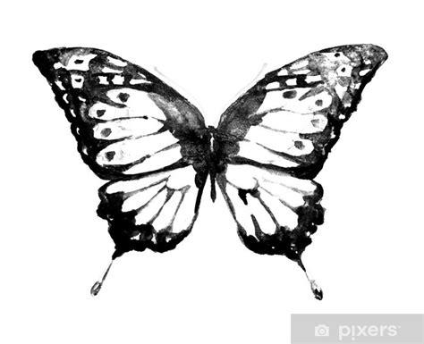 disegni per dipingere ad acquerello carta da parati farfalla disegno ad acquerello pixers