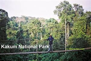Kakum National Park, Ghana - Welcome to Kakum National ...
