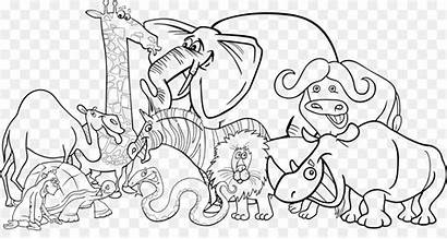Zoo Clip Drawing Transparent Pngio 2400