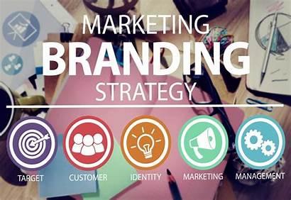 Brand Marketing Digital Company Market Website