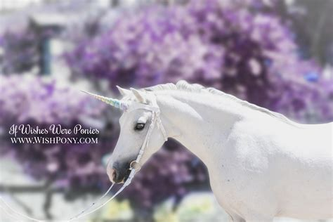unicorn browband if wishes were ponies
