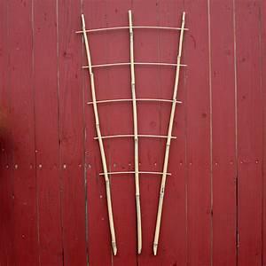 Rankhilfe Clematis Selber Bauen : rankgitter aus bambus native plants ~ Lizthompson.info Haus und Dekorationen