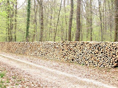 canapé cuir bordeaux troc echange bois de chauffage sur troc com