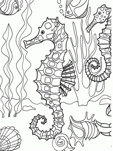 sea life coloring pages coloring home