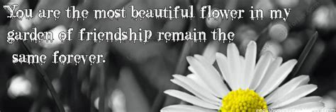 beautiful flower friendship quotes