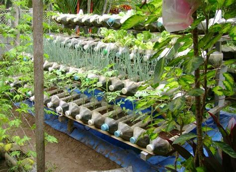 gardening ideas for plastic container gardening ideas ideas home inspirations