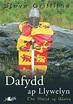 Dafydd ap Llywelyn: The Shield of Wales (9781847713384 ...