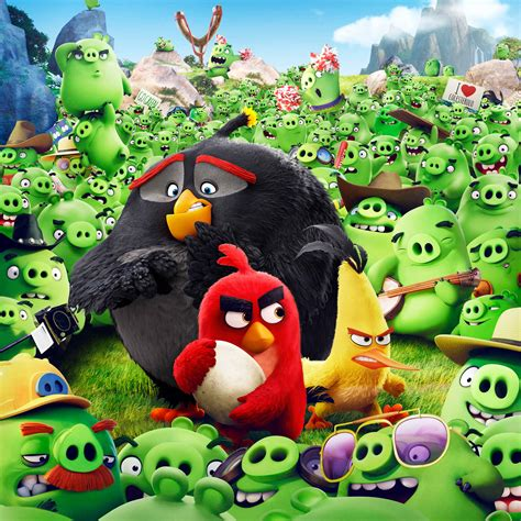 angry birds animation  wallpapers  jpg format