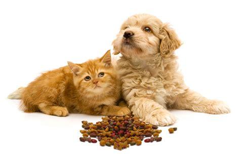 nutritional   puppieskittens veterinarians cape