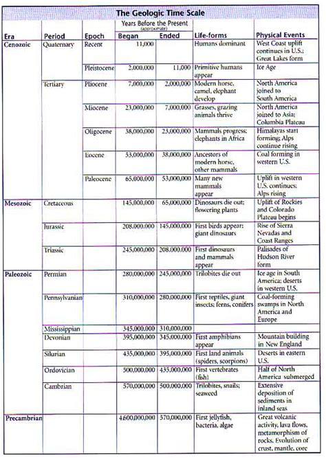 geologic time worksheet worksheets releaseboard free