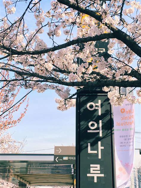 hangul blossom korean aesthetic in 2020 korea