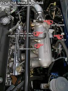 B16a 1st Gen And B16a 2nd Gen - Honda-tech
