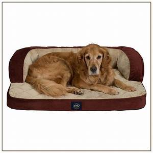 Dog beds for medium sized dogs dog beds and costumes for Dog beds for medium dogs