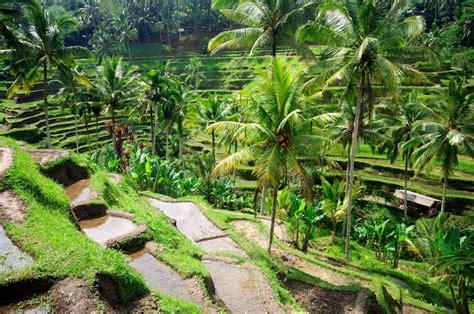 indonesie reizen luxe rondreis java en bali travelpa