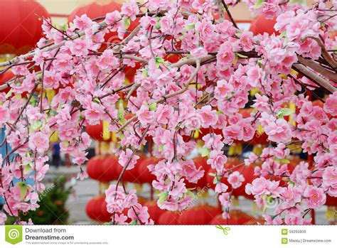 Chinese New Year Flower Tree Stock Image