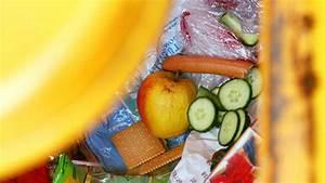 Maden In Der Mülltonne : maden in der m lltonne vorbeugen und bek mpfen mit hausmitteln bauen wohnen ~ Indierocktalk.com Haus und Dekorationen