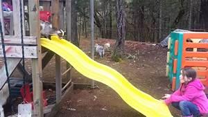 Big Baby Slide : baby goat going down slide youtube ~ A.2002-acura-tl-radio.info Haus und Dekorationen