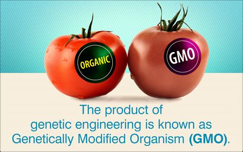 Modification Genetic Organisms by Facts About Genetic Engineering