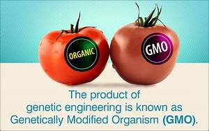 Facts About Genetic Engineering