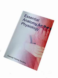 External Supplier  The Essential Anatomy  U0026 Physiology