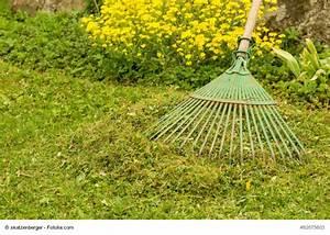 Trockene Stellen Im Rasen : rasen vertikutieren zeitpunkt und ablauf ~ Markanthonyermac.com Haus und Dekorationen