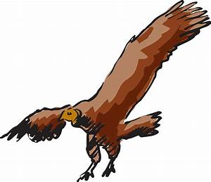 Flying Vulture Drawing