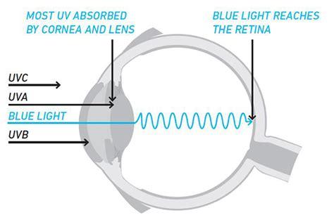 blue light macular degeneration wellness education optix eye care