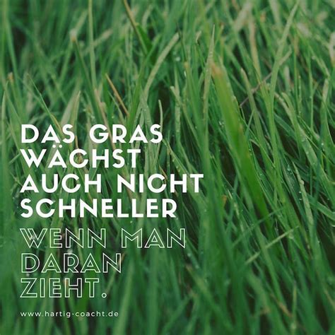 coaching inspirationen und impulse fuers selbstcoaching