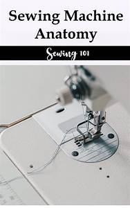 Sewing 101  Sewing Machine Anatomy