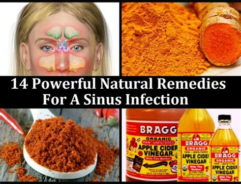 Natural Remedies For Dogs With Sensitive Skin Natural