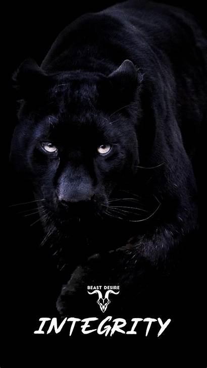 Beast Desire Motivational Quotes Lion Tiger