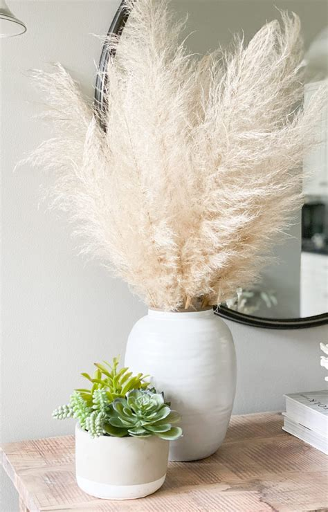 dry pampas grass  decorating coastal cass