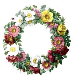 50 favorite free vintage flower images the graphics