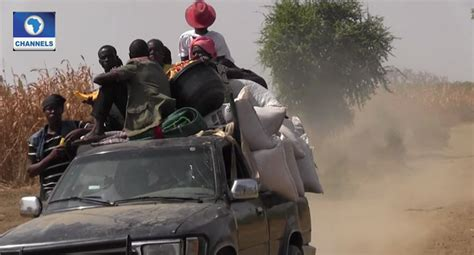 Residents Flee Adamawa Communities Over Rumoured Herdsmen