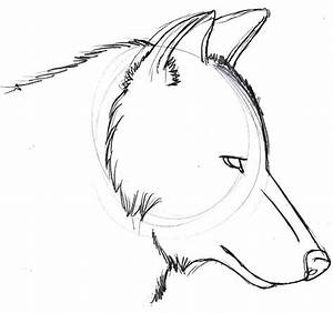 Drawing : Wolf Girl Drawing Easy Plus Wolf Drawing Easy ...