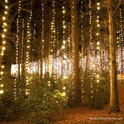 17 best ideas about lighted trees on outdoor