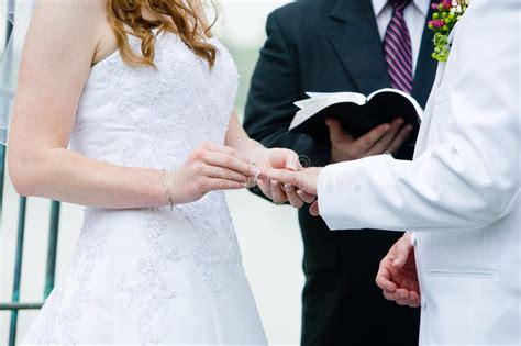 wedding ring exchange stock photography image 24043632