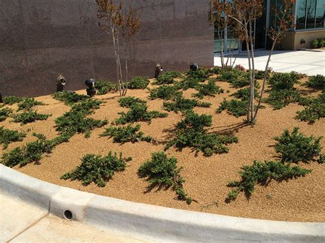 landscaping with crushed granite decomposed granite screenings landscape supply