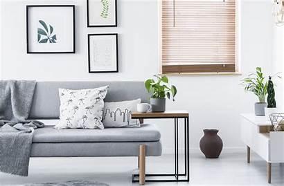 Minimalist Fresh Couch Fresca Why Way Hogar